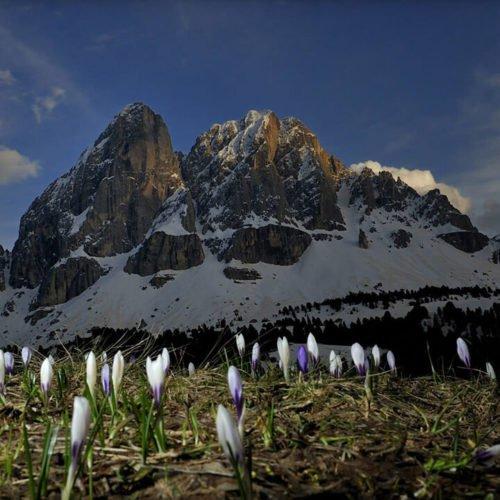 Impressionen von der Oberhauserhütte in Lüsen und Umgebung (1)