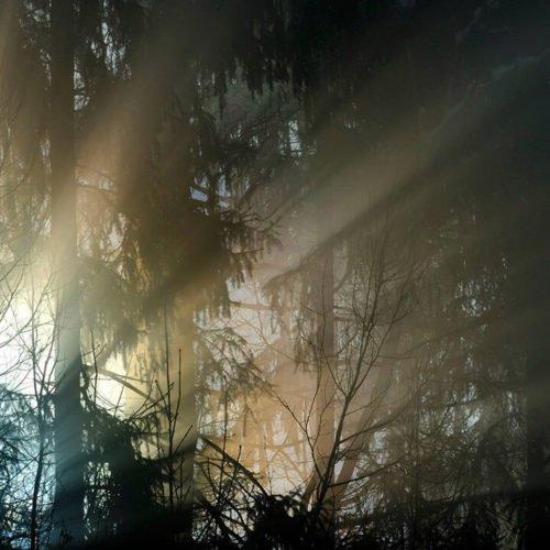 Impressionen von der Oberhauserhütte in Lüsen und Umgebung (17)