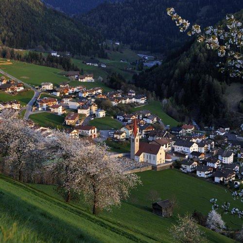 Impressionen von der Oberhauserhütte in Lüsen und Umgebung (19)