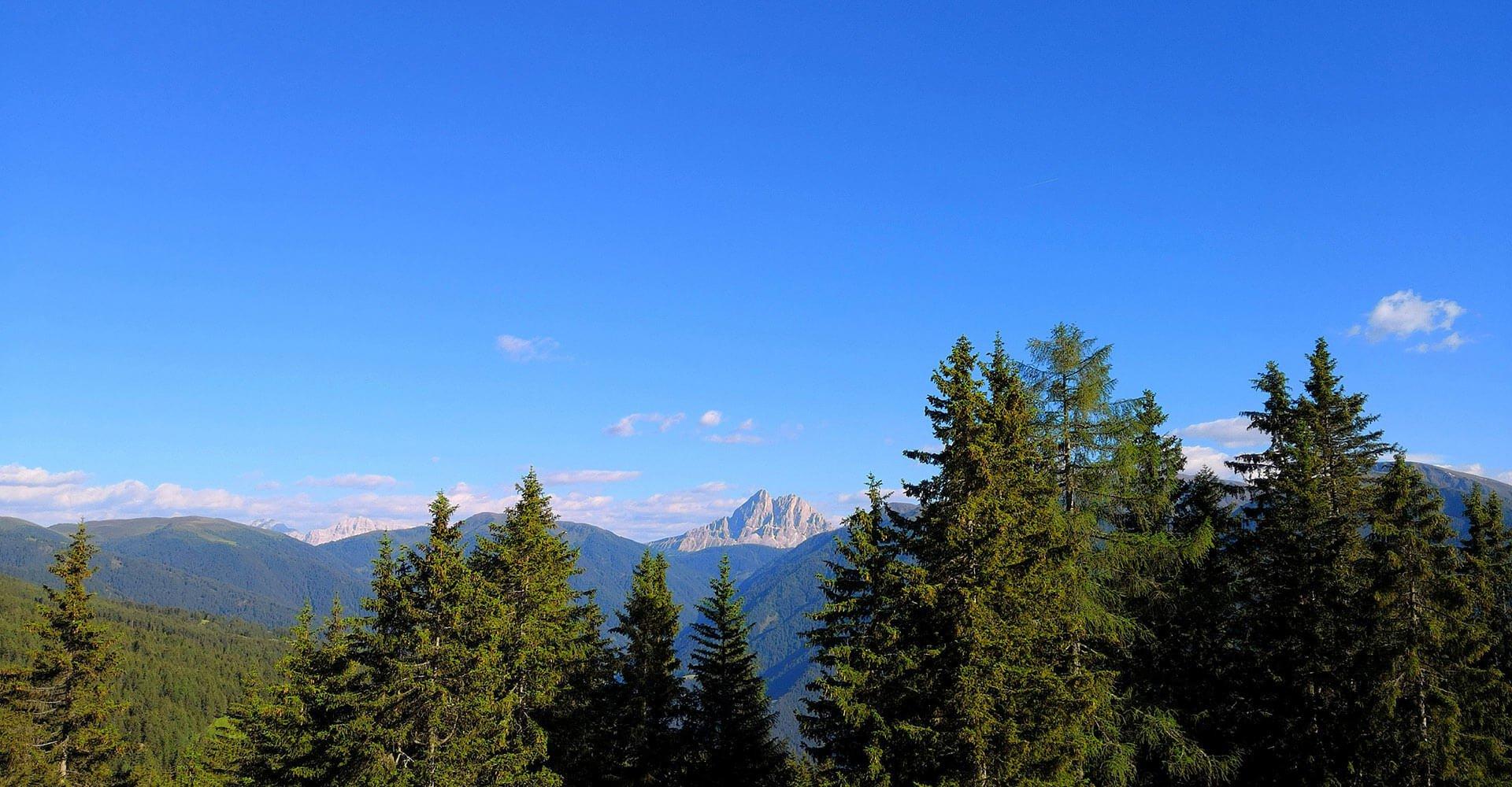 Berghütte auf der Lüsner-Rodenecker Alm