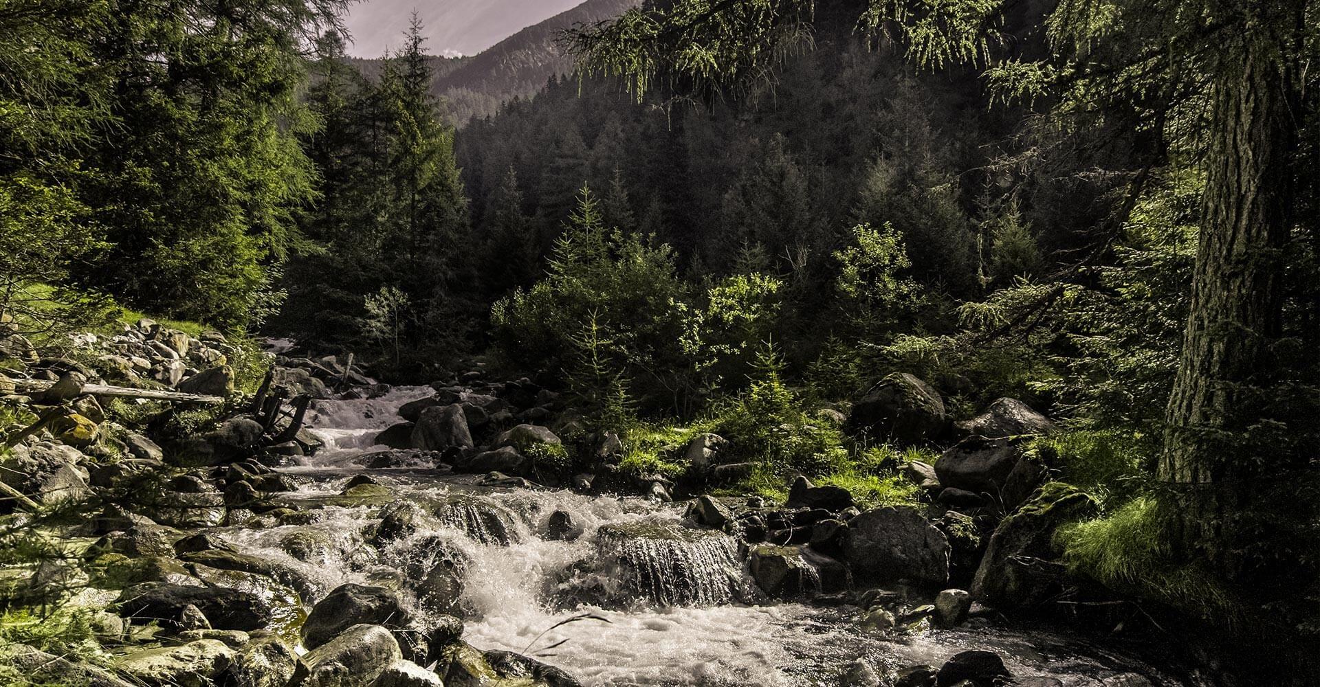 Peitler Kofel Südtirol