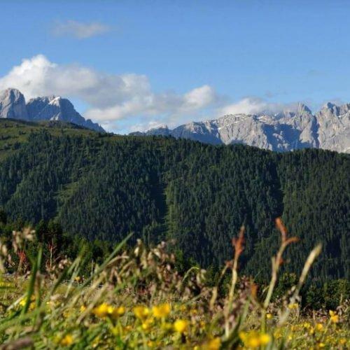 rifugio-oberhauserhuette-alto-adlige-luson-impressioni (1)