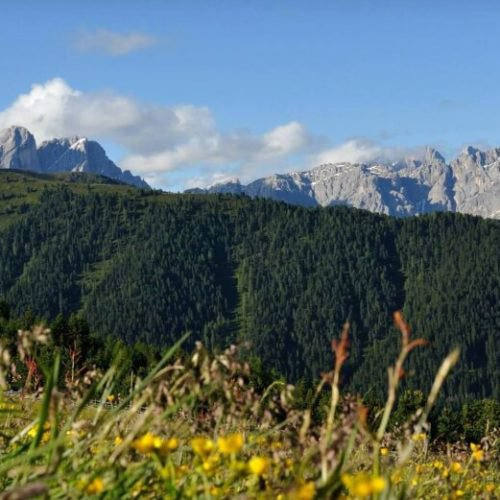 oberhauserhuette-south-tyrol-luson-impressios  (1)