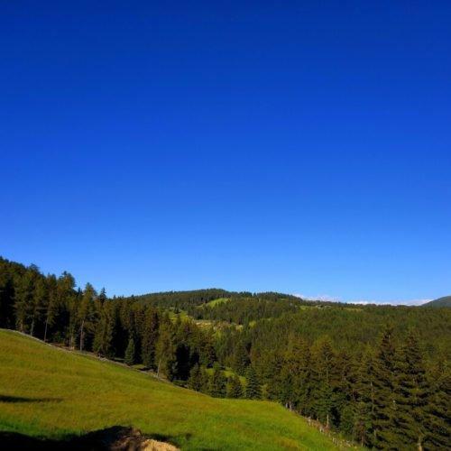 oberhauserhuette-south-tyrol-luson-impressios  (8)