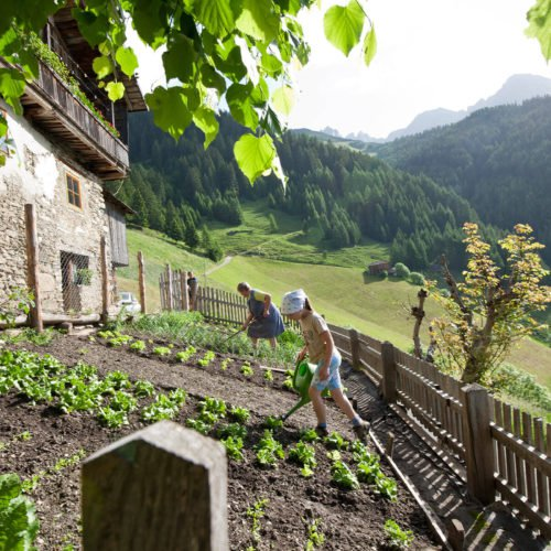 active-summer-a-unforgettable-summer-holiday-at-the-alp-oberhauserhuette-4